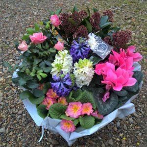 coupe de plantes deuil du magasin le jardin du vievre à saint georges du vievre en normandie 27450